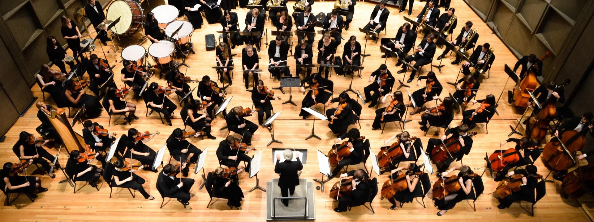 Cerebro de im Músico de Orquesta